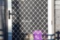 diamond-grille-security-door-30